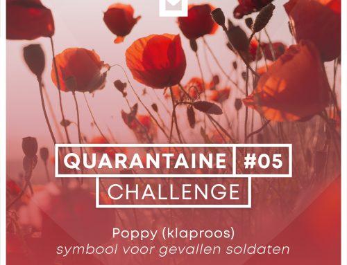 Quarantaine Challenge #5 – Poppy